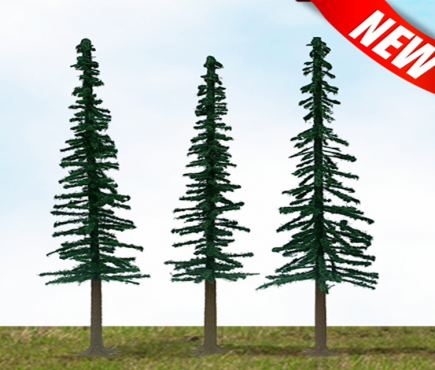 Scenic Conifer (new)